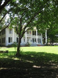 Interested in some old Dallas real estate? Visit the Dallas Heritage Village - Millermore house, you won't be disappointed! Great family outing.