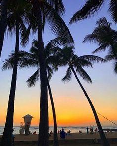 アロハなビーチライフスタイル情報サイト-hawaii.jp