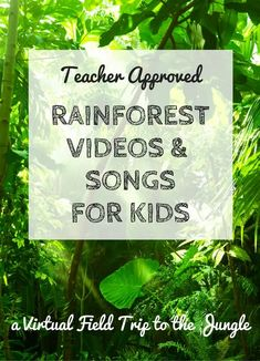 Explore on a virtual field trip to the rainforest as we discover jungle animals and plants with rainforest videos and rainforest songs for kids. Rainforest Facts For Kids, Rainforest Song, Rainforest Preschool, Rainforest Classroom, Rainforest Project, Amazon Rainforest, Rainforest Crafts, What Is A Rainforest, Brazil Rainforest