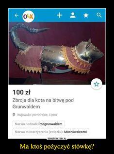 Ma ktoś pożyczyć stówkę? – 100 zł Zbroja dla kota na bitwę pod Grunwaldem 9 Kujawsko-pomorskie, Lipno Nazwa hodowli: Podgrunwaldem Nazwa stowarzyszenia (związku): Mocniiwaleczni Dank Memes Funny, Wtf Funny, Cat Memes, Dankest Memes, Polish Memes, Weekend Humor, Funny Mems, Meme Comics, Cat Love