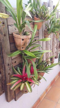 Painel de madeira reciclada para jardim vertical- viaverde_paisagismo