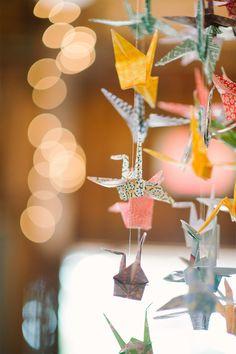PaperCranes   Jenny Moloney Photography