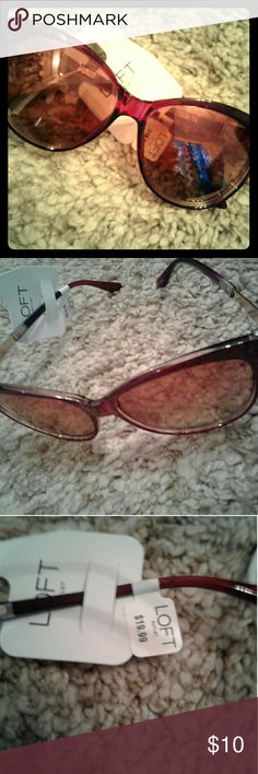 Stylish Oversized Loft Sunglasses BRAND SPANKING NEW,  tags are still attached. Look amazing and protect your eyes all at the same time! LOFT Other