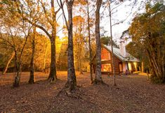 Rockwood Forest Lodge in the Karkloof Nature Reserve. Photo by Teagan Cunniffe. Nature Reserve, Logs, South Africa, Travel Destinations, Remote, Hotels, Country Roads, Camping, House Styles