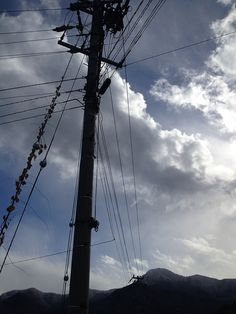 Telegraph poles near Obasute station