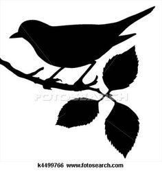 Bird on branch clipart