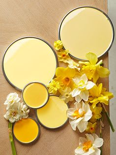 "Yellows: These happy daffodil hues are a sure mood-booster. ""I'm hooked on the joyous, youthful, and adventurous atmosphere yellow affords a room,"" says Will Taylor"