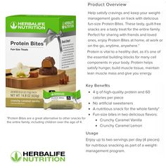 Herbalife Products, Herbalife Shake Recipes, Herbalife 24, Herbalife Nutrition, Nutrition Club, Nutrition Education, Tea Snacks, Protein Bites, Fun Size