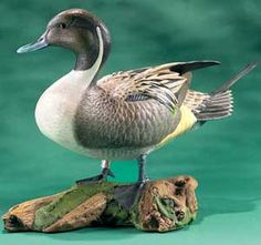 Standing Pintail Duck Decoy