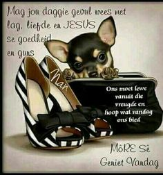 Lekker Dag, Afrikaanse Quotes, Goeie More, Good Morning Wishes, Dog Quotes, French Bulldog, Faith, Dogs, Animals