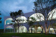 Gallery - Tama Art University Library / Toyo Ito by Iwan Baan - 2