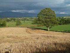 The Eden Valley, Cumbria