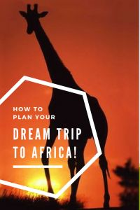 Planning A Trip to Africa - Travel Stories and Images
