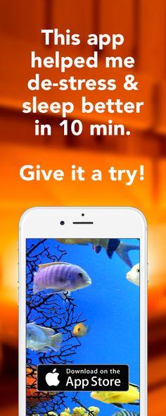 clock shark app
