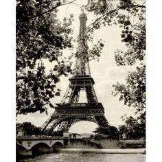 Eiffel Tower II Canvas Art - Amy Melious (24 x 30)