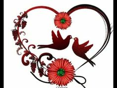 lost love spells caster expert in benoni/delmas/brakpan Love Heart Gif, Dont Break My Heart, Birds In The Sky, Love Birds, Heart In Nature, Lost Love Spells, Love Spell Caster, My Heart Is Yours, Bird Gif