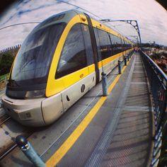 71 transporte público