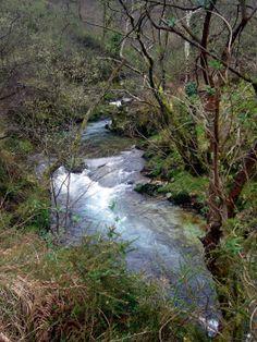 siguiendo el rio