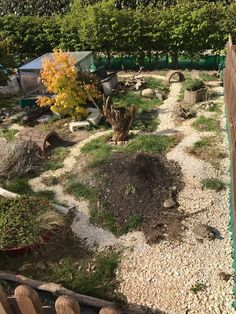 Are you thinking of buying a tortoise to keep? Tortoise pet care takes some planning if you want to be. Tortoise House, Tortoise Habitat, Tortoise Table, Turtle Habitat, Reptile Habitat, Outdoor Tortoise Enclosure, Turtle Enclosure, Sulcata Tortoise, Tortoise Vivarium