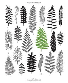 20 Ways to Draw a Tree and 44 Other Nifty Things from Nature: A Sketchbook for Artists, Designers, and Doodlers: Eloise Renouf: 978159253837...