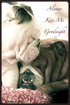 Love is: Always Kiss Me Goodnight