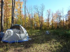The Ever Growing List Of Camping Tips & Tricks For Beginners
