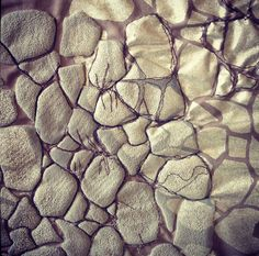 """So for my A-level exam my theme was """"scales"""" which lead me to look at animal scales. I became really interested in the technique of puff binder and explored with printing using the ink in various w..."""