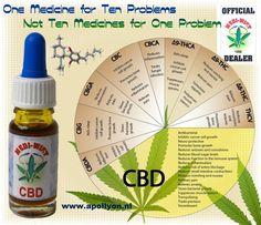 CBD olie CBD olie, afkomstig van Stichting Mediwiet, kun je nu voordelig online kopen bij Headshop Apollyon! De medicinale CBDolie is gemaakt van speciaal voor dit doel gekweekte hennepplanten met een zo hoog mogelijk CBD gehalte en een zo laag mogelijk THC gehalte waardoor deze olie, in tegenstelling tot THC-olie, volledig legaal verkrijgbaar is. http://www.apollyon.nl/cbd-olie/
