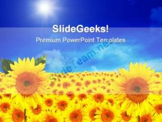Sunflowers01 Beauty Garden PowerPoint Template 1110 #PowerPoint #Templates #Themes #Background