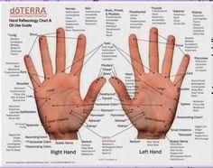 görcsrohamok és térdfájdalom közös lebontási készítmények