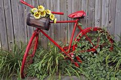 Red bicycle with basket of yellow flowers