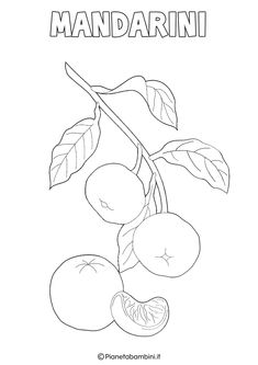 Disegni di Frutta Invernale da Colorare   PianetaBambini.it Fruit Art, Coloring Pages, Embroidery, Education, Drawings, Winter, Sunday School, Christmas Crafts, Appliques