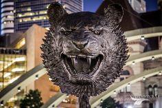 Ai WeiWei at Toronto's Nathan Phillip Square (City Hall) Ai Weiwei, Toronto, Lion Sculpture, Statue, City, Photography, Photograph, Cities, Photo Shoot
