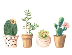 Digital Art Roundup: Cacti & Succulents | Snaps: A Blog from SnapBox