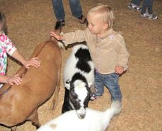 Cuddle Up With Some Farm Animals
