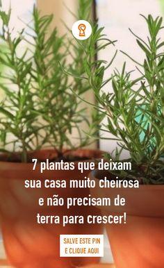 Faux Plants, Potted Plants, Zen, Diy Arts And Crafts, Garden Crafts, Handmade Home, Plant Decor, Vegetable Garden, Gardening Tips