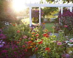 Meadowbrook Farm: garden love