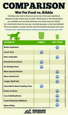 Do You Know The Many Do You Know The Many Benefits Of Wet Food For Cats And Dogs Doglovershub Food Animals Cat Food Cat Feeding Guide