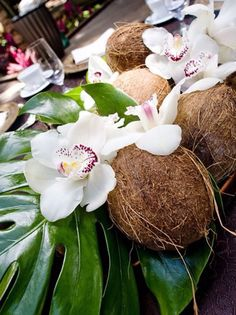 Would incorporate native split leaf philodendron and coconuts could use on buffet or sign in table