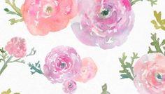 Free Watercolor Flower Clip Art - Ranunculus Flowers
