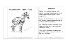 Bildergebnis für zebra klasse material