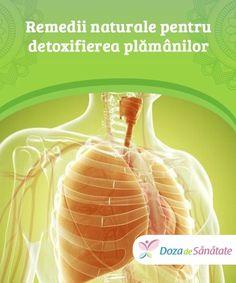 Remedii naturale pentru detoxifierea plămânilor.  Pe lânga evitarea mediilor contaminate, când vine vorba de detoxifierea plămânilor, este foarte important să adopți o dietă echilibrată pentru a obține toți nutrienții necesari pentru întărirea acestor organe. De asemenea, trebuie să renunți la fumat. Health, Desserts, Food, Tailgate Desserts, Deserts, Health Care, Essen, Postres, Meals