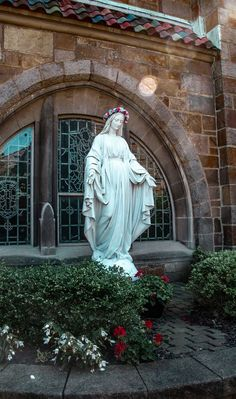 Mother Mary Images, Images Of Mary, Free Images, Catholic Pictures, Jesus Pictures, Catholic Art, Religious Art, Mother Mary Wallpaper, Catholic Wallpaper