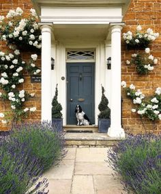 Farrow and ball front door manor house 17 ideas for 2019 Front Door Curtains, Front Door Porch, Exterior Front Doors, House Front Door, Glass Front Door, Front Door Decor, Glass Doors, Modern Closet Doors, Georgian Doors