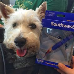 I have finally arrived as a celebrity. I now how my own plane hehe @southwestair
