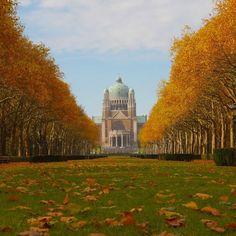 Afbeeldingsresultaat voor autumn in Brussels