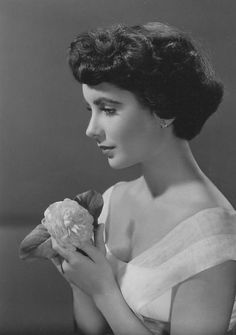 Lover of old hollywood and anything vintage. Hollywood Icons, Old Hollywood Glamour, Hollywood Stars, Hollywood Actresses, Classic Hollywood, Actors & Actresses, Virginia Woolf, Elizabeth Taylor, Classic Beauty