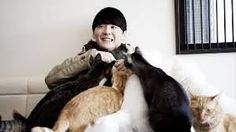 """Résultat de recherche d'images pour """"Lee jun ho and his cat"""""""