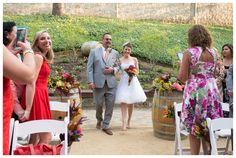 Testarossa Winery Wedding photos- Susannah Gill-17