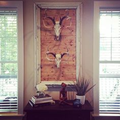 DIY Home Decor summary number 4073576996 - Clear and easy decor styling answers for the delightfully smart atmosphere. Deer Skull Decor, Deer Head Decor, Deer Skulls, Deer Antlers, Deer Heads, Western Decor, Rustic Decor, Antique Decor, Deer Mount Decor